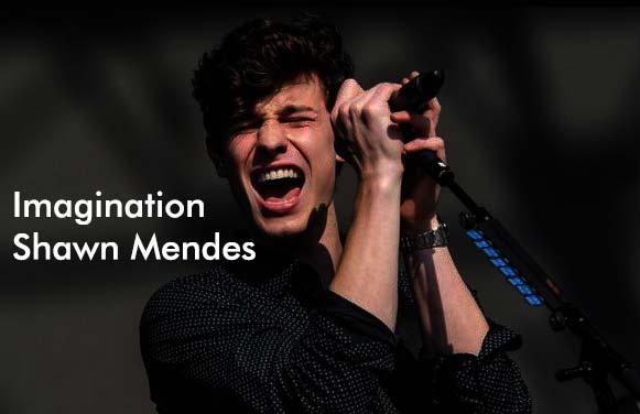 Makna dan Terjemahan Imagination - Shawn Mendes