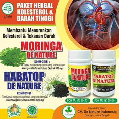obat kolesterol darah tinggi de nature