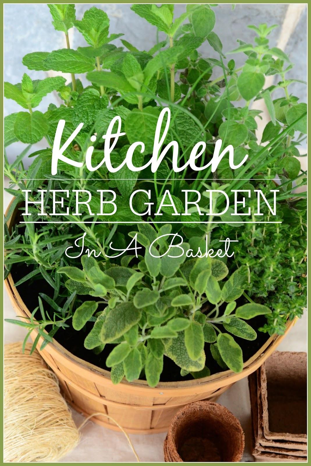 kitchen herb garden in a basket