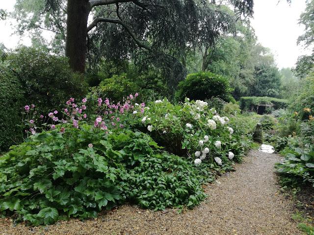 ogród w cieniu, ogród angielski