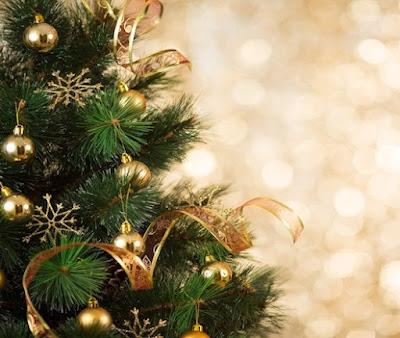 Frasi Albero Di Natale.Frasi Dell Albero Di Natale Disegni Di Natale 2019
