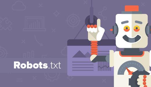 Cara Mudah Setting Robot TXT di Wordpress yang Benar dan SEO Friendly