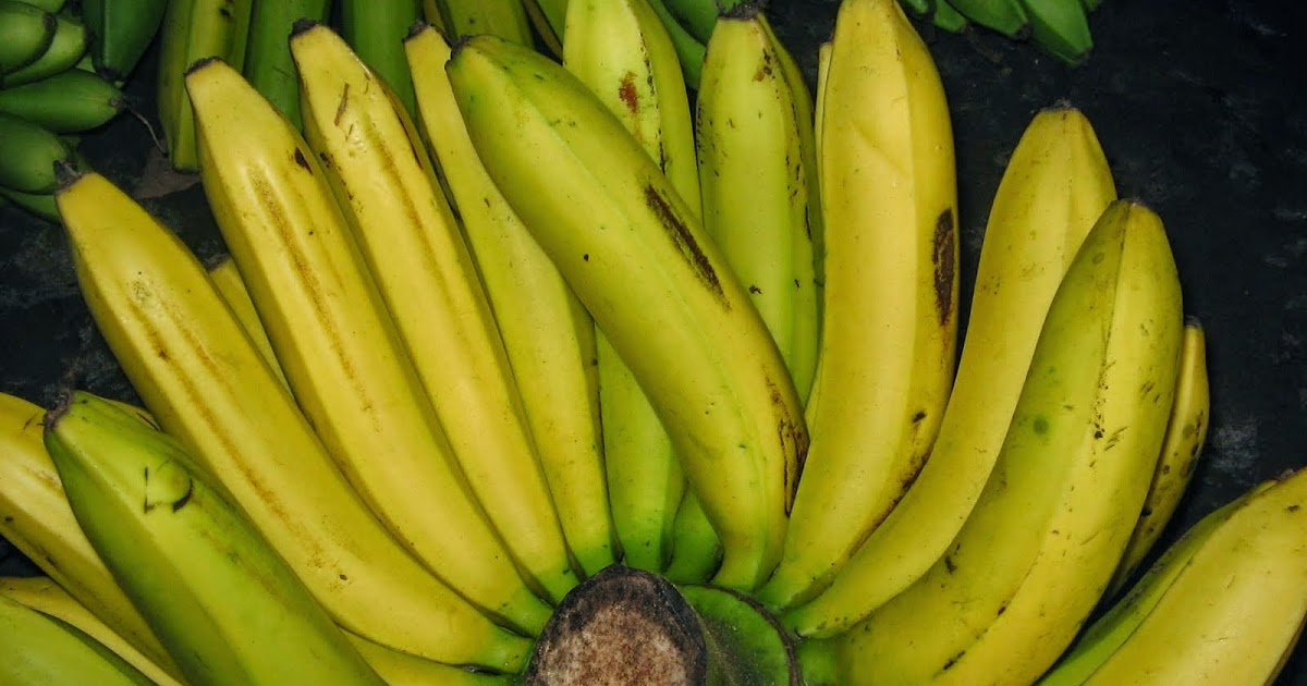 10 Manfaat Mengkonsumsi Buah dan Sayur Setiap Hari