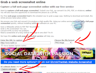 Capture a full web page screenshot online