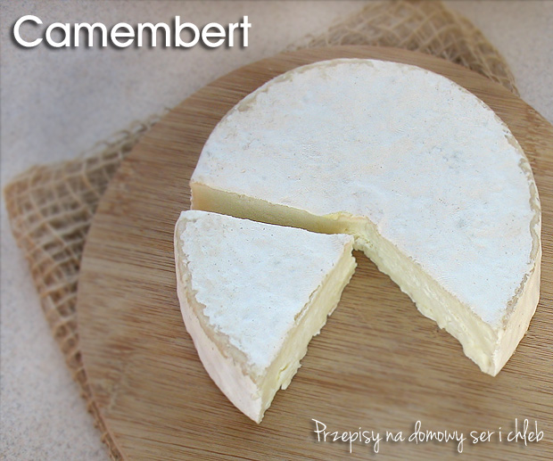 Jak zrobić domowy ser typu Camembert?