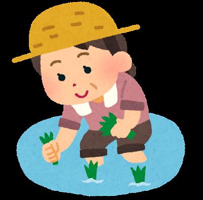 田植えをする女性のイラスト