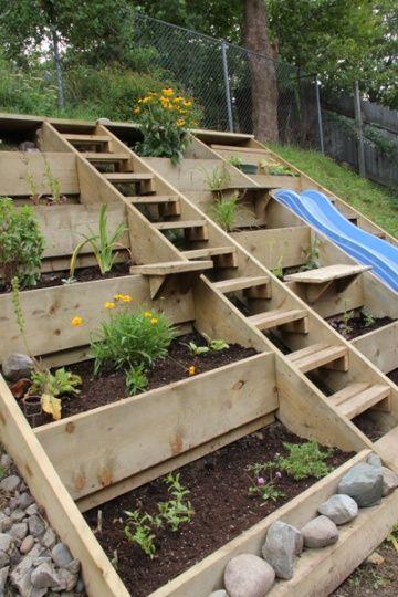 Breuillet nature des potagers qui font r ver album for Jardin potager en escalier