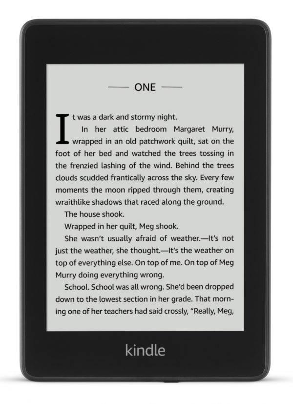 Kindle Paperwhite 4 ekran i front obudowy