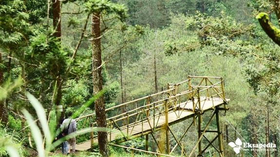 Jembatan Bambu di Grenden