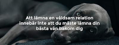 VOOV - Veterinär Omtanke Om Våldsutsatta - Rörelse för djurrätt