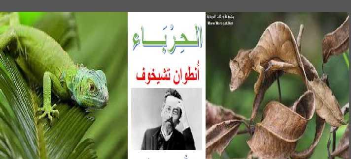 حل درس  الحرباء لغة عربية للصف الثانى عشر الفصل الأول - مناهج الامارات