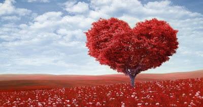 Puisi Cintaku Terperangkap di Semak Rindu.
