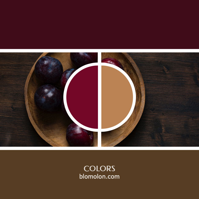 variedad_en_color_color_12