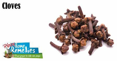 Home Treatments For Intestinal Parasites (worms) In Dogs: Cloves