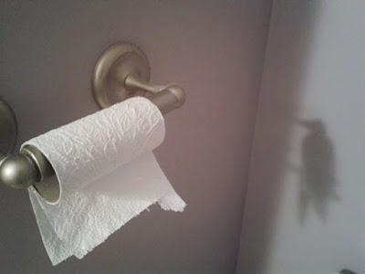 inanılmaz gölgeler tuvalet kağıdı