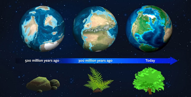 Earth's natural history may now serve as a guide for astronomers to spot exoplanets. About 500 million years ago, this planet had a different light signature due to the dominance of moss. About 300 million years ago, ferns dominated and mature plant forms rule today - strengthening our planet's light signature. Credit: Jack O'Malley-James/Wendy Kenigsberg/Brand Communications