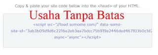Copy Script sumome