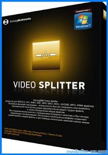 SolveigMM Video Splitter Business 6.1 full