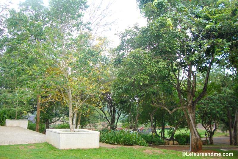 Pinnawala Open Zoo