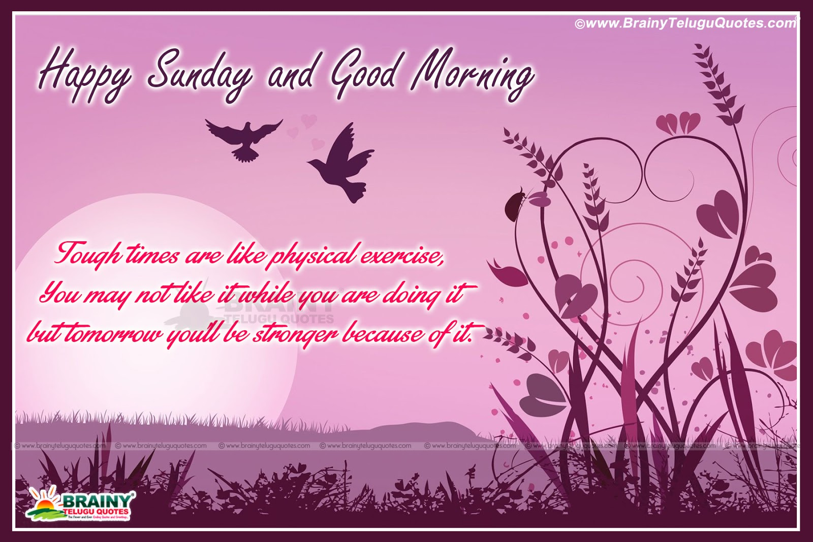 Happy Sunday and Good Morning Inspirational lines in English-English Inspirat...