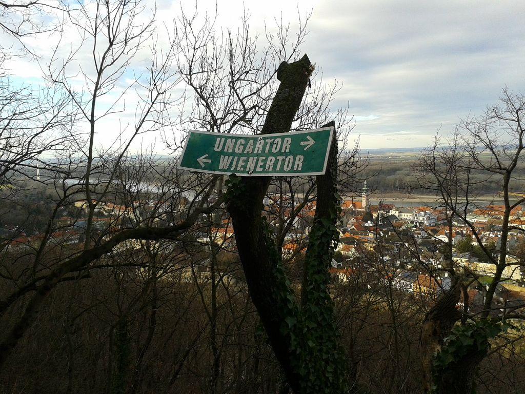 Burgruine-Arbeitsgruppe-Carnuntum-Roemerland-Niederoesterreich