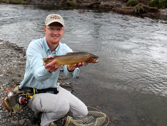 Yellowstone cutthroat trout on the Lamar River