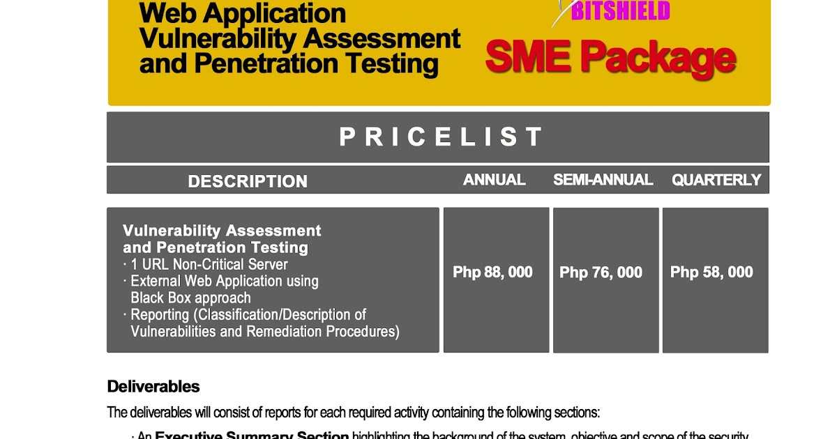Web Application Security Assessment Template | resume builder
