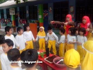 http://lialathifa.blogspot.com/2016/03/belajar-menanam-sayur-bersama-morinaga.html