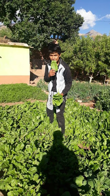 Gitarrist Miguel probiert schon mal den Salat