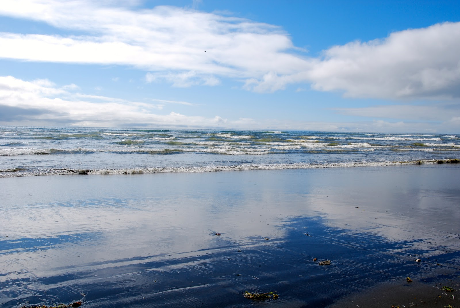 Wanderlust Traveler: Ocean Shores, Washington