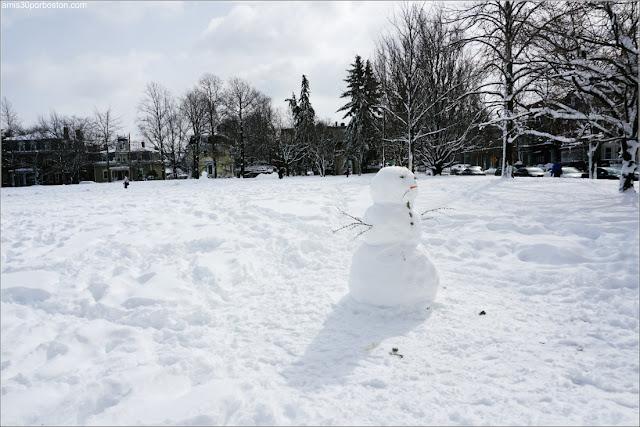 Skylar: La Segunda Tormenta de Nieve del 2018