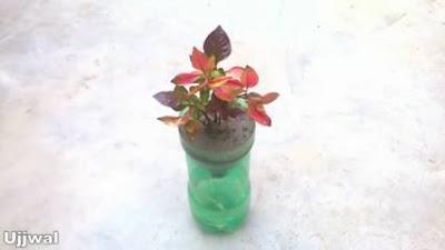 cara membuat pot bunga