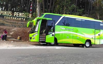 Liburan Wisata Hutan Pinus Pengger Jogja