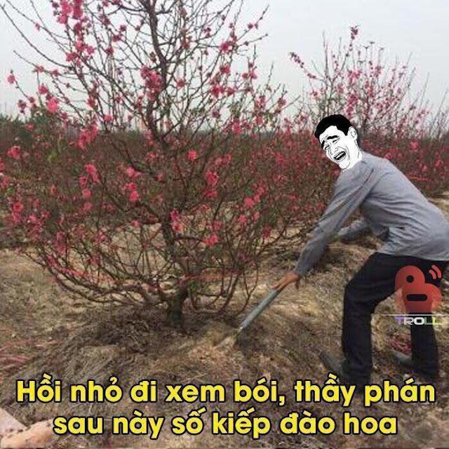 """Số kiếp đào hoa, đào cả đời :D Ảnh chế cực hài """"Ngày xưa thầy phán..."""" DM THẦY"""