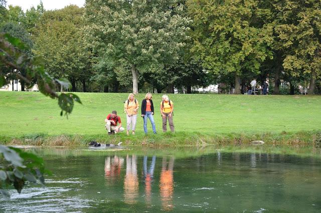 Vier Wanderer stehen am Paderufer - ein Hund schwimmt im Fluss.