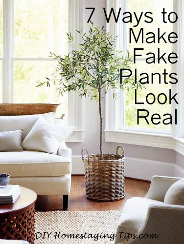 Staging Your Own Home By Ing My Ebook Diy Tips To Fast And For Top Dollar It S A 4 99 Pdf Bargain