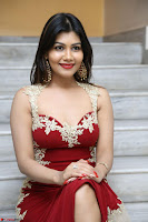 Rachana Smit in Red Deep neck Sleeveless Gown at Idem Deyyam music launch ~ Celebrities Exclusive Galleries 028.JPG