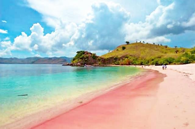 Pantai-Pink