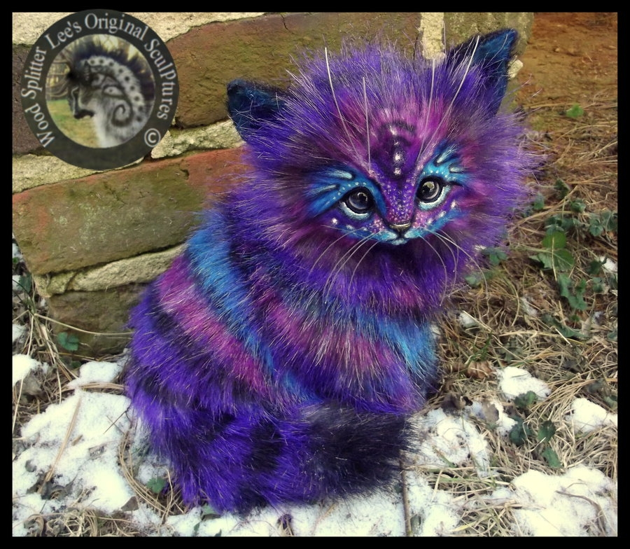 16-Stardust-Kitten-Wood-Splitter-Lee-Animals-Art-that-look-Alive-www-designstack-co