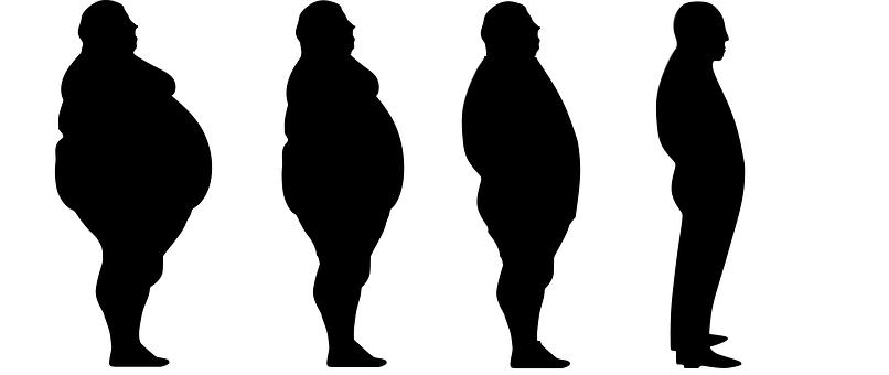 La guía de referencia para la quema de grasa Fitness