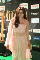 Nidhi Subbaiah Glamorous Pics in Transparent Peachy Gown at IIFA Utsavam Awards 2017  HD Exclusive Pics 62.JPG
