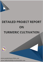Turmeric Cultivation Project Report