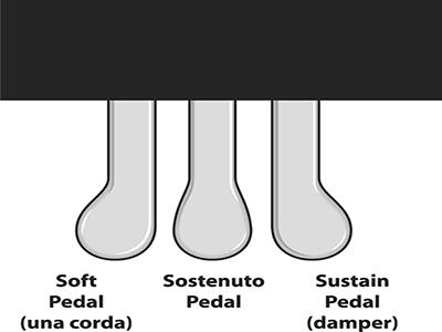 Pedal đàn Piano và cách sử dụng