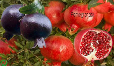 Pomegranate,Pomegranate fruit,ডালিম