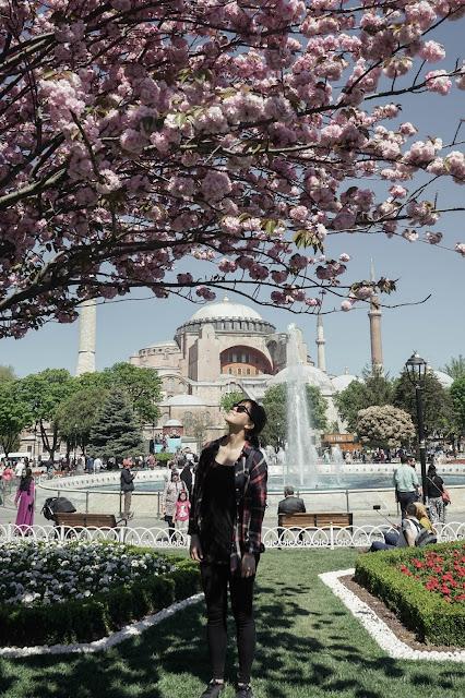 Istanbul Turkey Hagia Sophia Spring