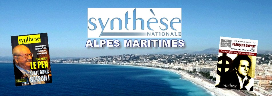 SYNTHESE NATIONALE ALPES MARITIMES