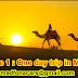 Programe 1 : One day trip in MERZOUGA