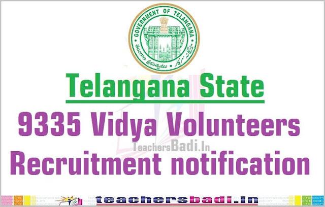 TS Vidya Volunteers,VVs Recruitment,Online application form