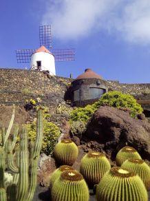 Giardino dei Cactus