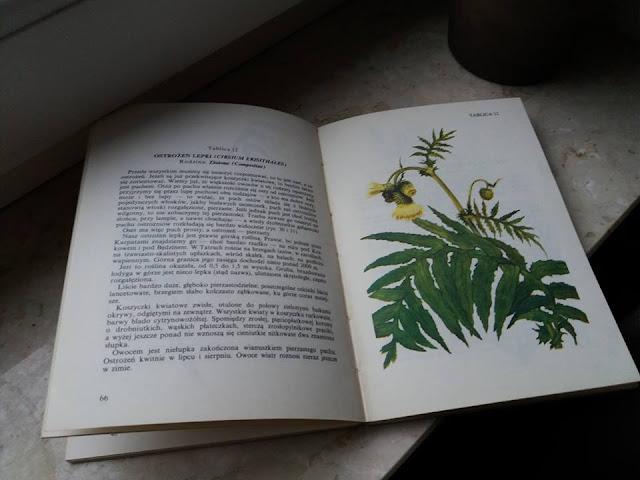 książki vintage